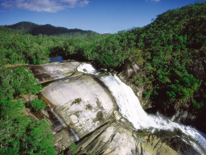 Tour In Cairns Daintree National Park And Cape Tribulation
